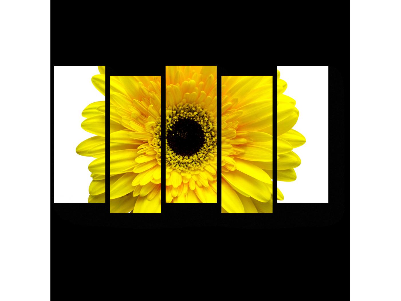 Модульная картина Солнечная гербера (90x52) фото