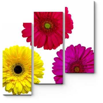Насыщенность цветочных красок
