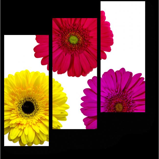 Модульная картина Насыщенность цветочных красок