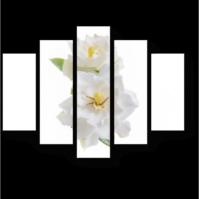 Модульная картина Белые гардении