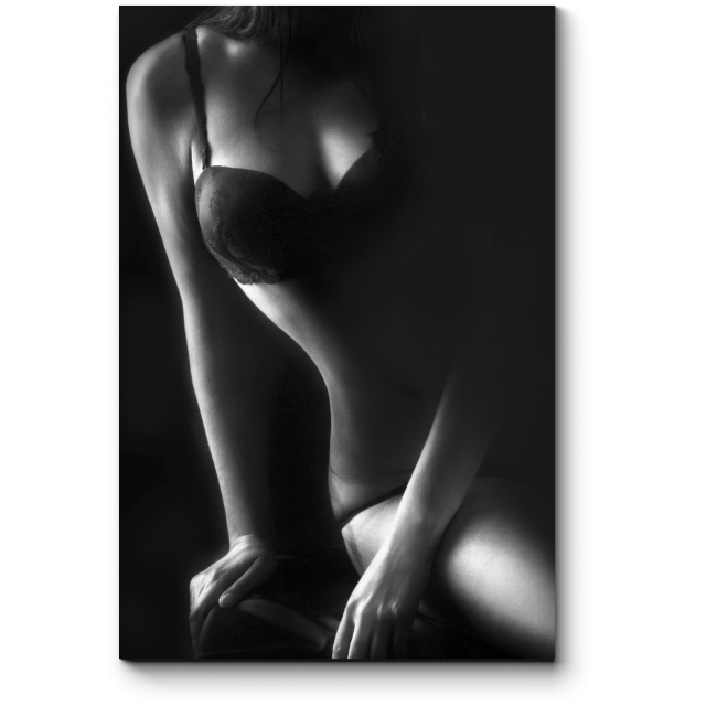 Модульная картина Сексуальная изысканность