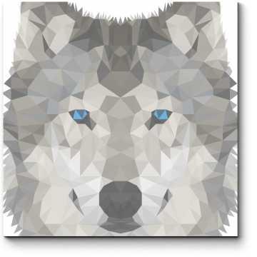 Волчья геометрия