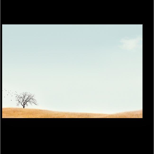 Модульная картина Осень в поле