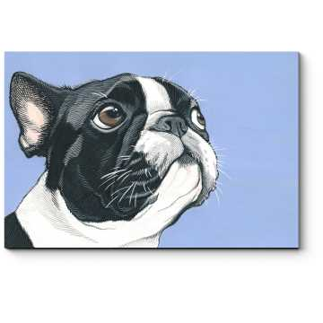 Модульная картина Минималистичный пес