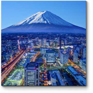 Токио с высоты птичьего полета