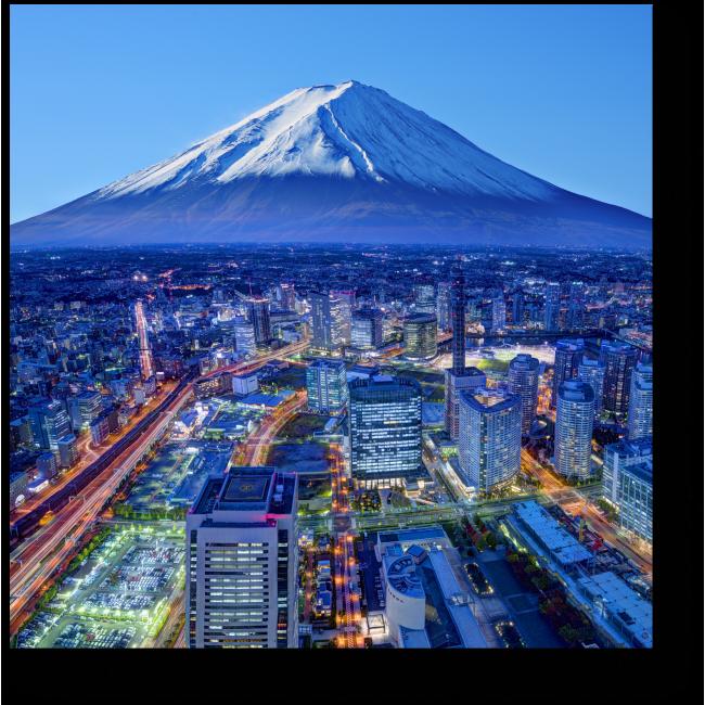 Модульная картина Токио с высоты птичьего полета