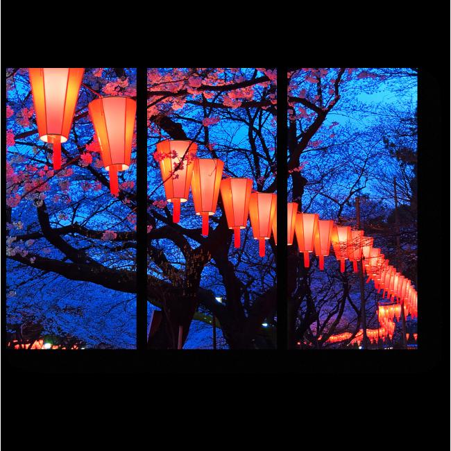 Модульная картина Магический свет огней в парке Уэно, Токио