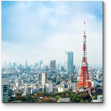 Летнее небо над Токийской телебашней