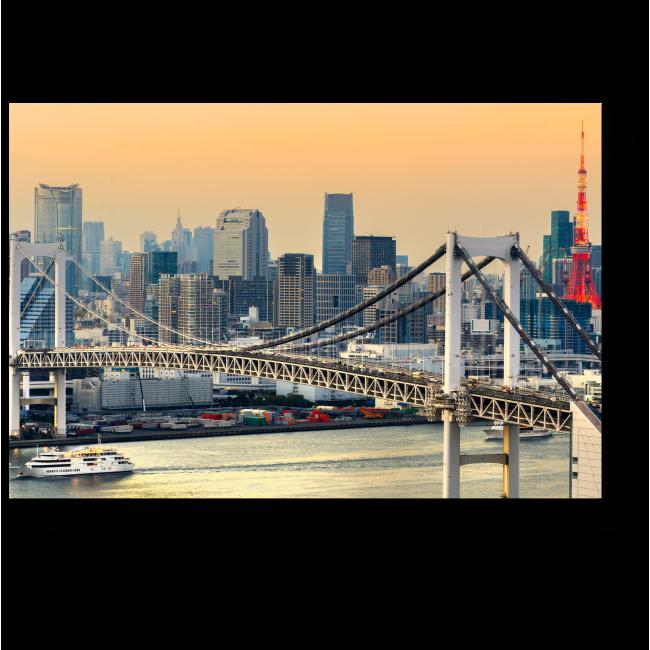 Модульная картина Урбанистический пейзаж, Токио