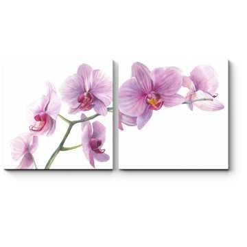 Модульная картина Ветка чудесной орхидеи
