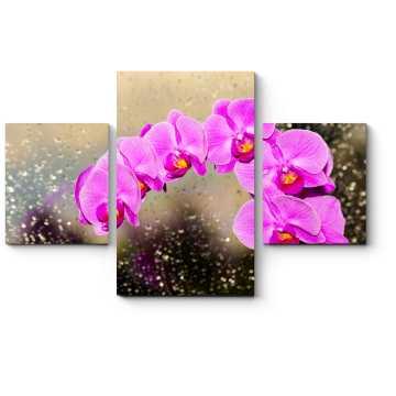 Роскошная орхидея