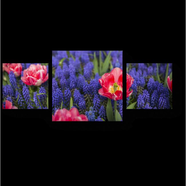 Модульная картина Цветение красок весны