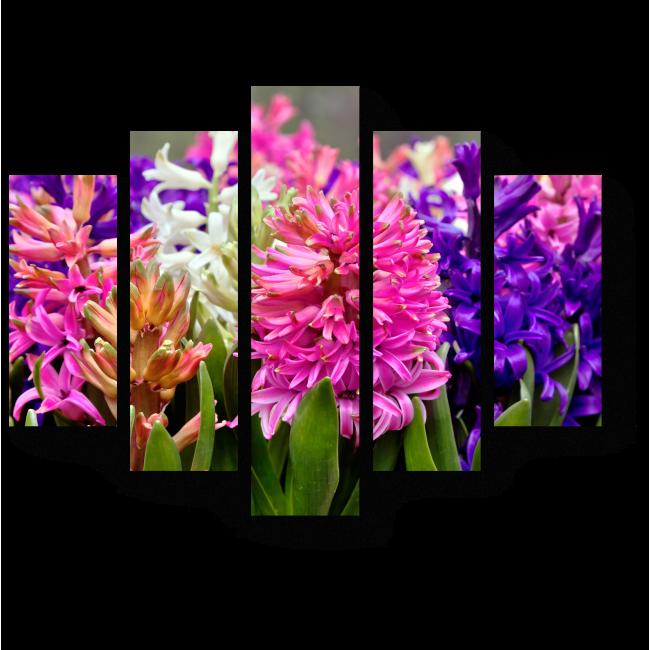 Модульная картина Буйство весенних красок