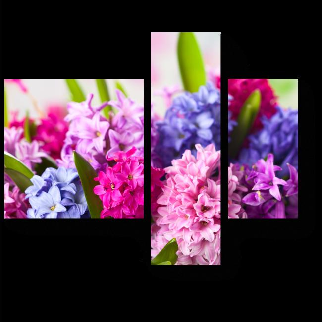 Модульная картина Разноцветные гиацинты