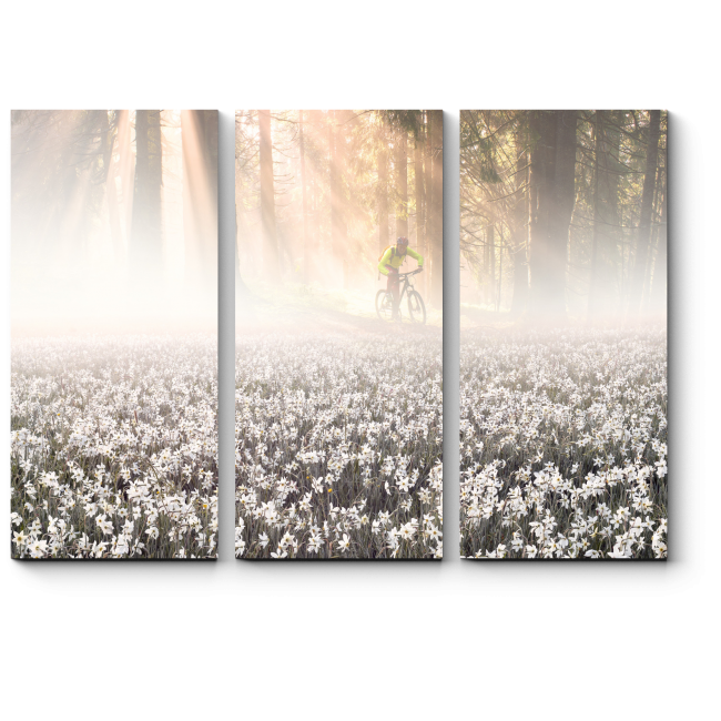 Модульная картина Туманное утро в лесу