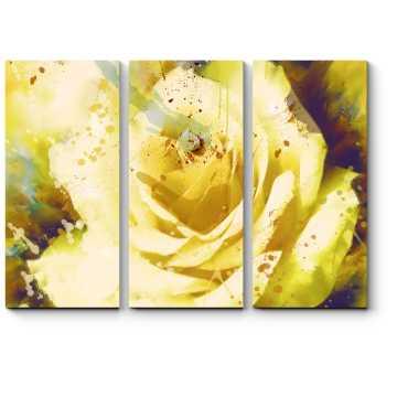 Прекрасный цветок розы