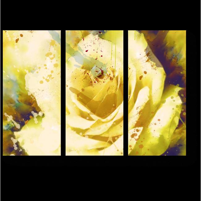 Модульная картина Прекрасный цветок розы