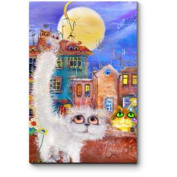 Обаятельные котики летней ночью