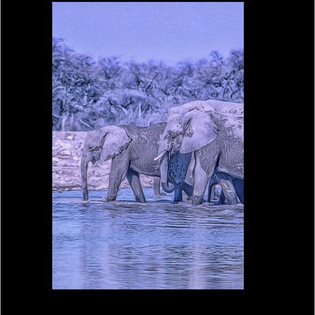 Модульная картина Африканские слоны на водопое