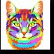 Портрет радужного кота