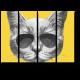 Просто серый кот в очках