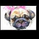 Милый щенок с заячьими ушками