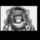 Отважный исследователь космоса