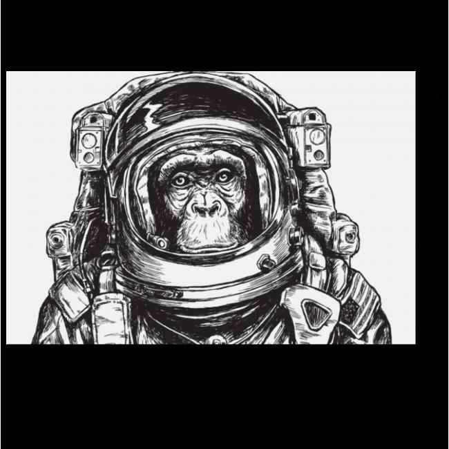 Модульная картина Отважный исследователь космоса