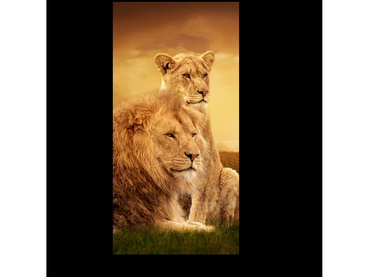 Модульная картина Королевская семья (20x40) фото