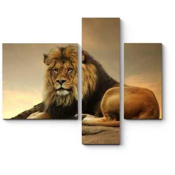 И цари устают