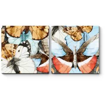 Удивительные и яркие бабочки