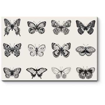 Модульная картина Черно-белые бабочки