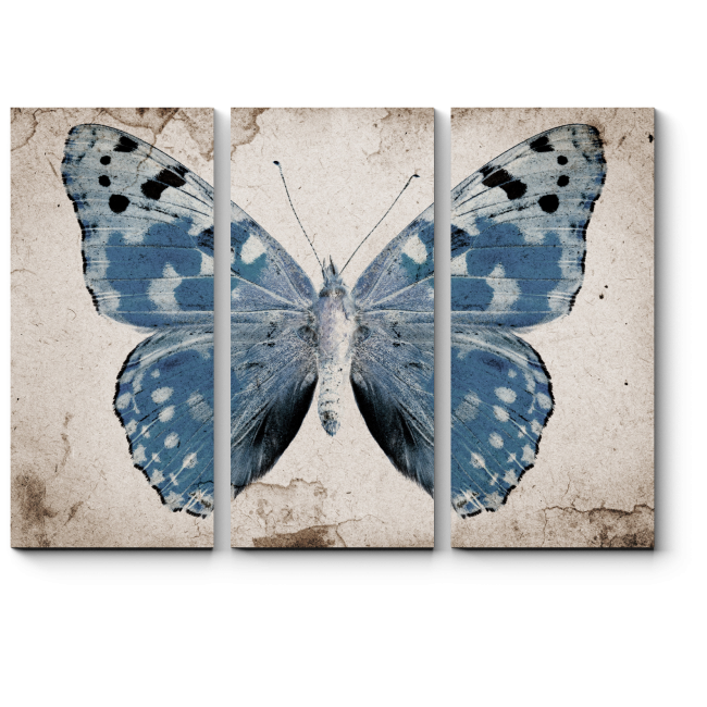 Модульная картина Винтажная голубая бабочка