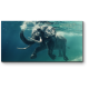 Слон покоряет океан