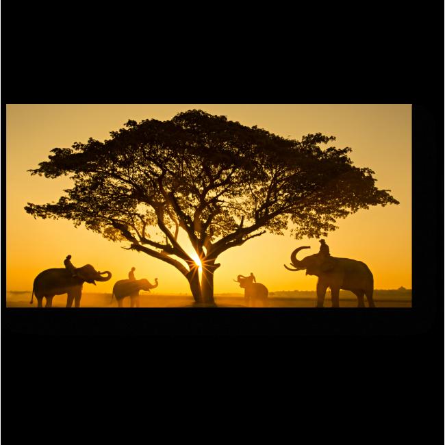 Модульная картина Слоны встретились на закате