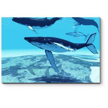 Модульная картина Миграция китов