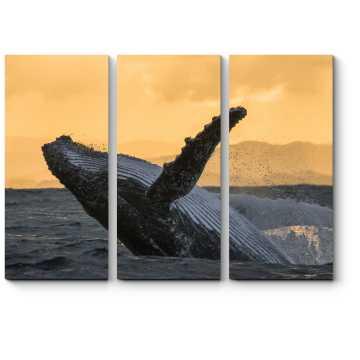 Величественный кит