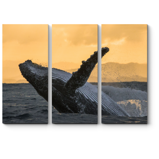Модульная картина Величественный кит