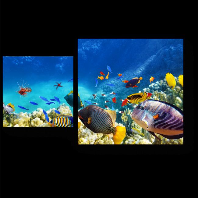 Модульная картина Путешествие на глубину