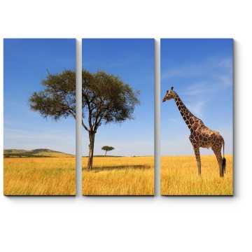 Одинокий африканский жираф