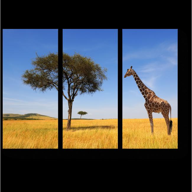 Модульная картина Одинокий африканский жираф