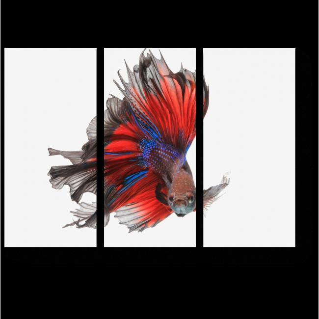 Модульная картина Летающая рыба