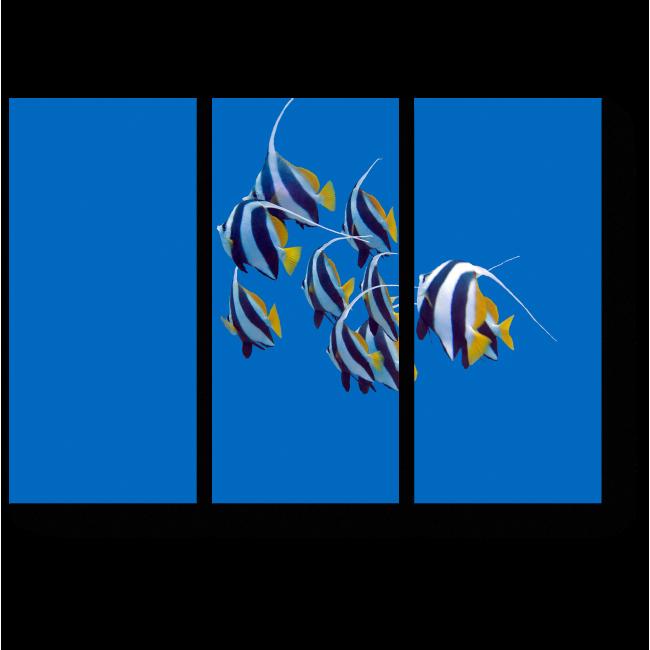 Модульная картина Тропические рыбы