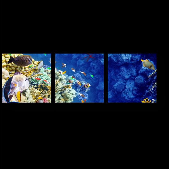 Модульная картина Обитатели морского дна