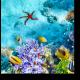 На глубине моря