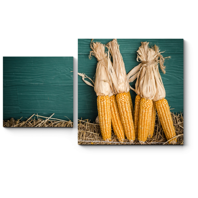 Модульная картина Кукуруза поспела