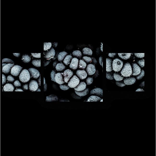 Модульная картина Морозная ежевика