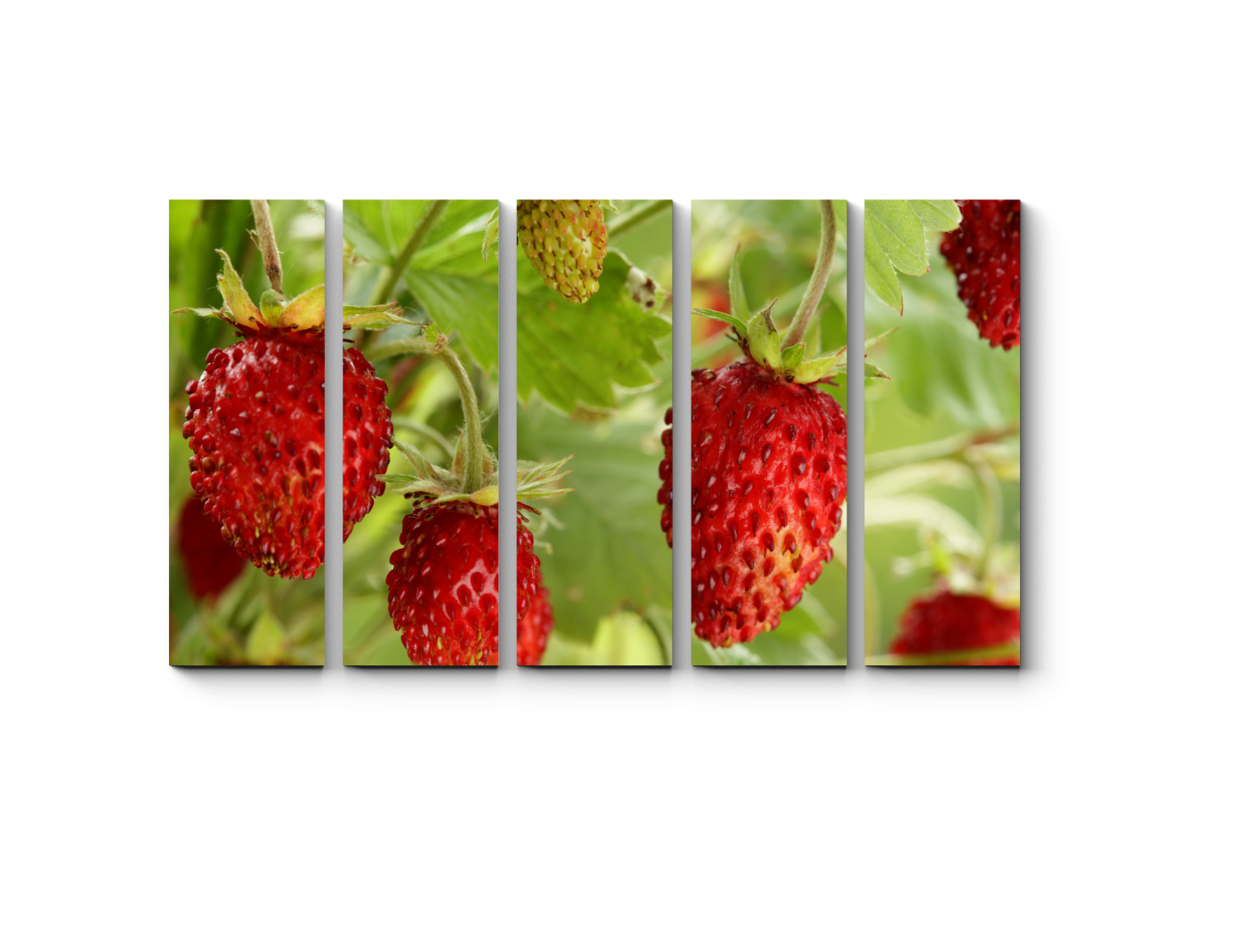 Модульная картина Малютки-клубнички (90x54) фото