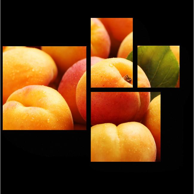 Модульная картина Румяные абрикосы