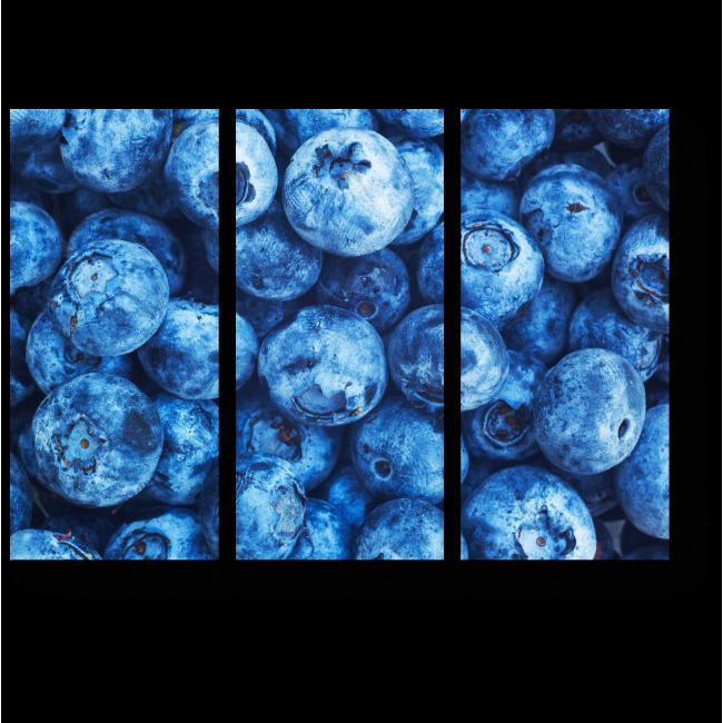 Модульная картина Голубика макро